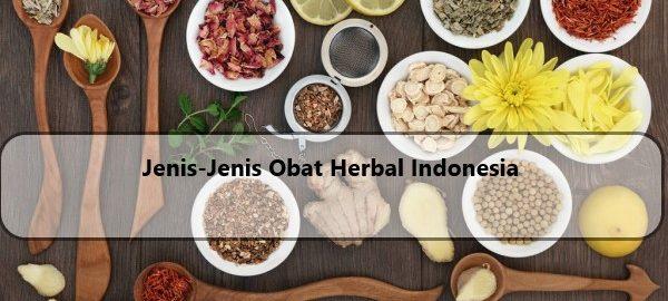 Jenis Obat HERBAL